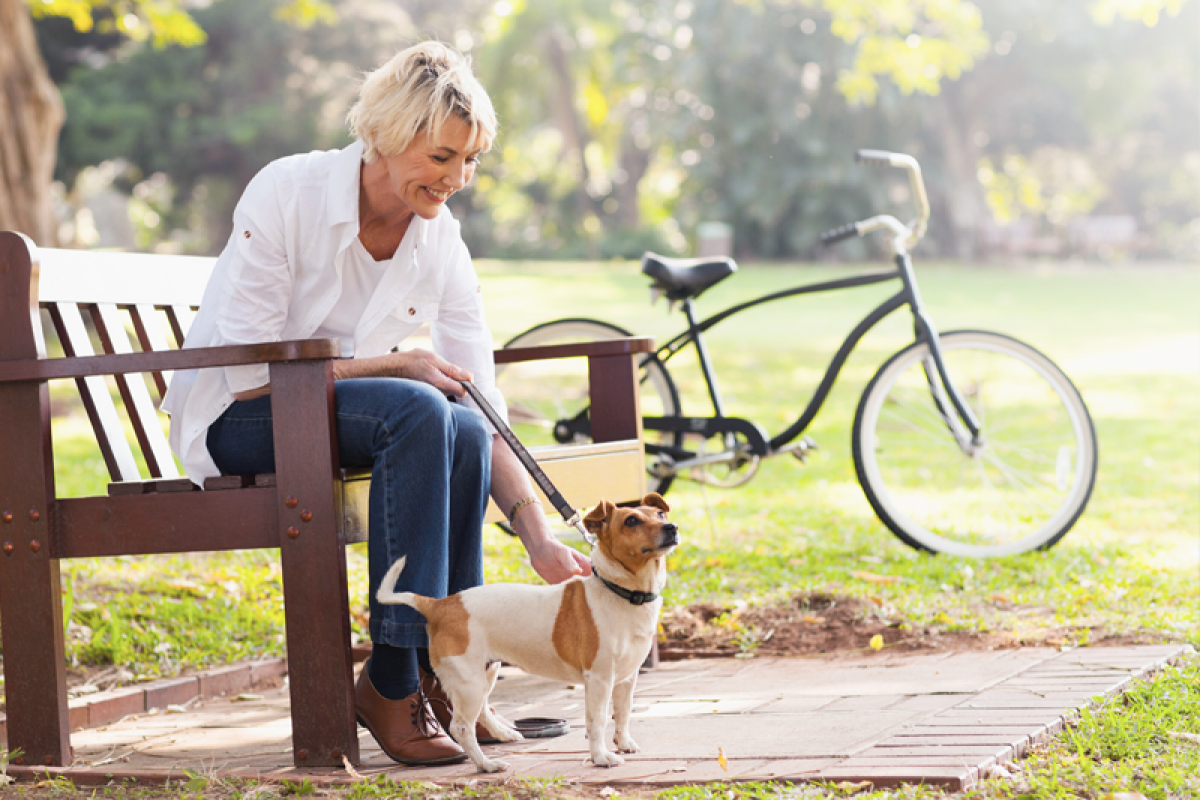 A woman sitting on a park bench petting a dog on a sunny day